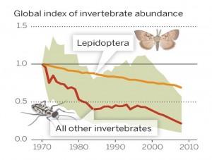 insectdeclineinsert