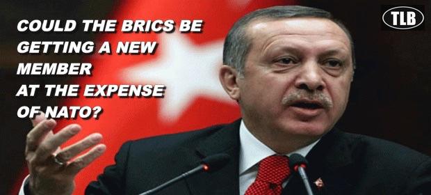 ErdoganBRICSmember2