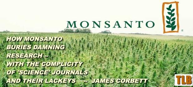 Monsanto112
