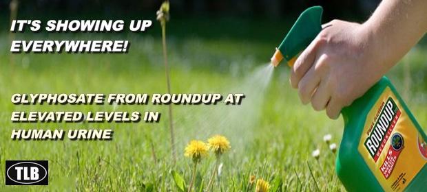 SprayWeedsRoundup112