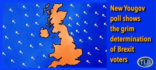 Brexitdetermination12