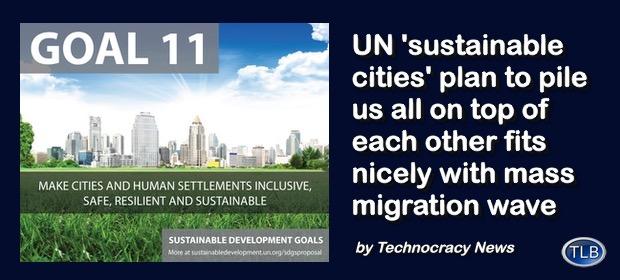 SustainableCitiesUNMigration