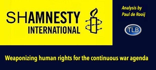 AmnestyIntpropaganda1