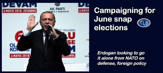 Erdoganelections